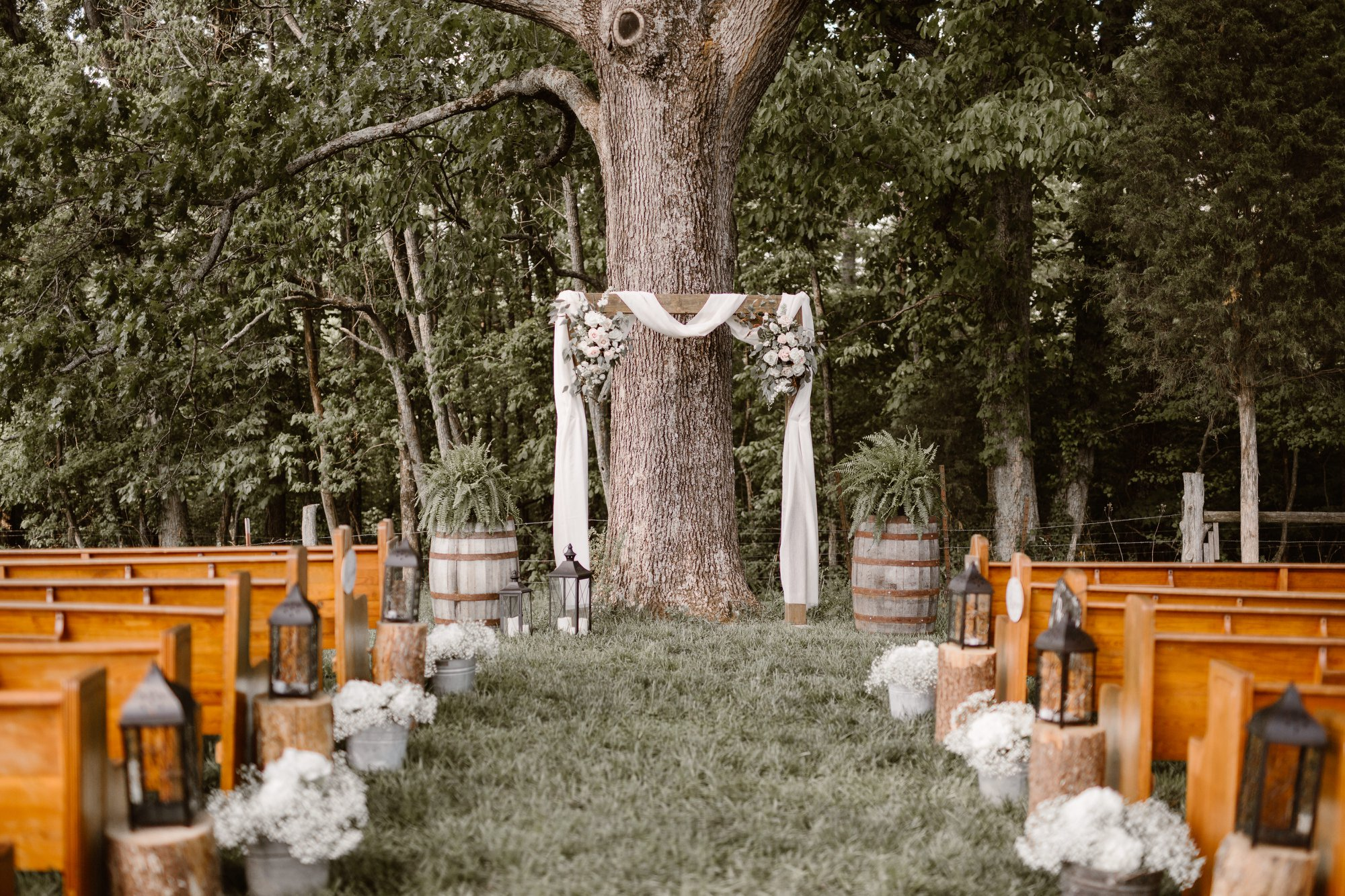ceremony set up under tree