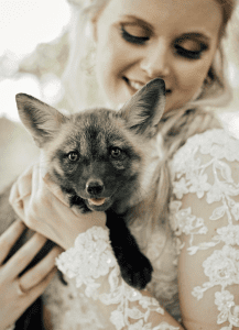 bride holding fox
