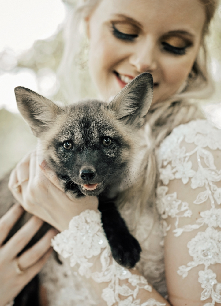bride holding fox