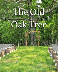 The Old Oak Tree 2