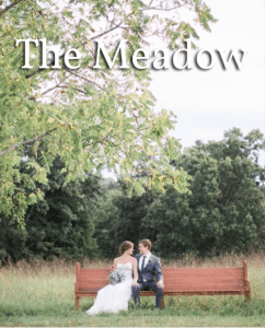 The Meadow 2